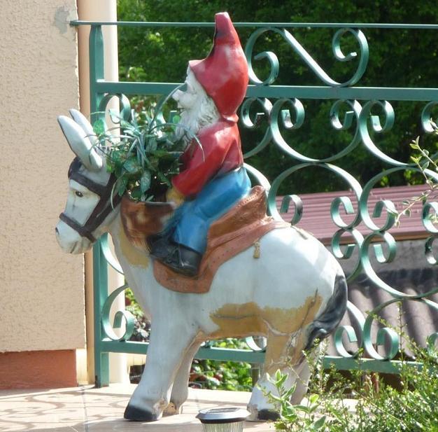 Nain au poney