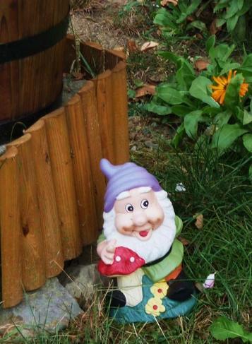Forest et Groink les nains de jardin